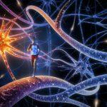 Как тело влияет на наш мозг. 5 основных аспектов влияния.